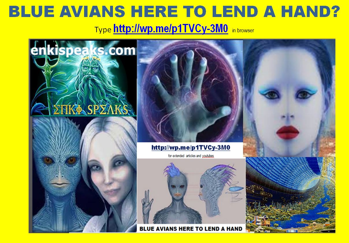 BLUE AVIANS HERE TO LEND A HAND?